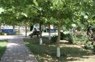 Парк у администрации 1_1